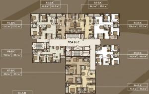Thiết kế căn hộ Mandarin Garden 2 Tòa B và C