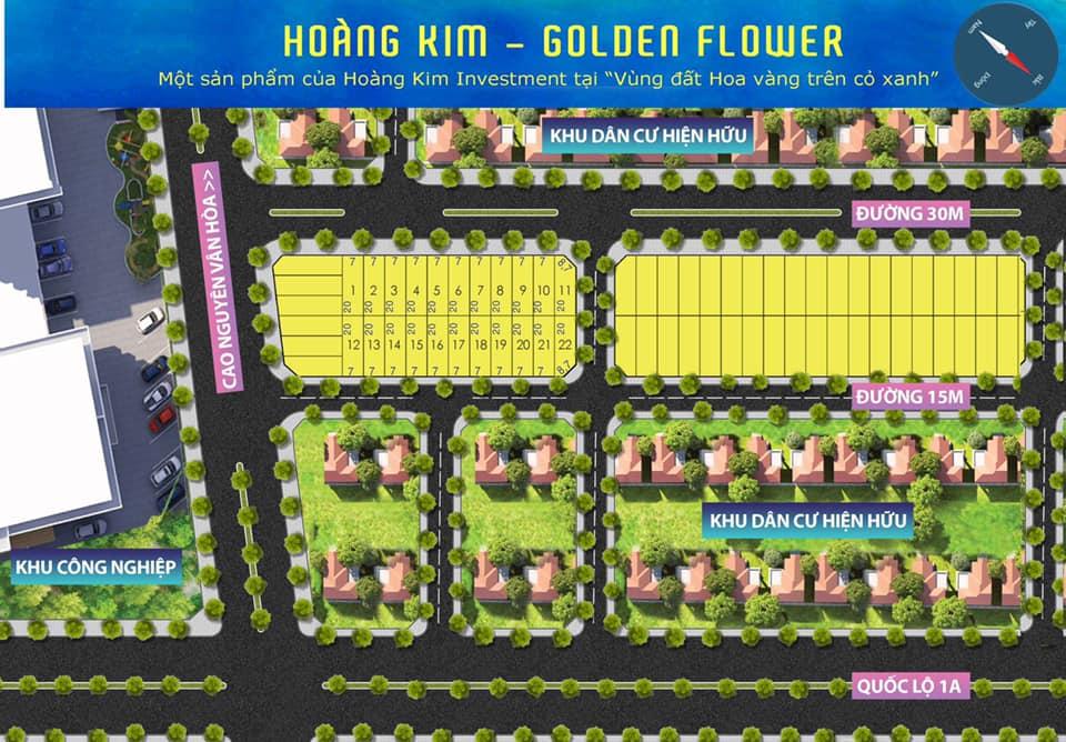 mặt bằng dự án hoàng kim golden flower