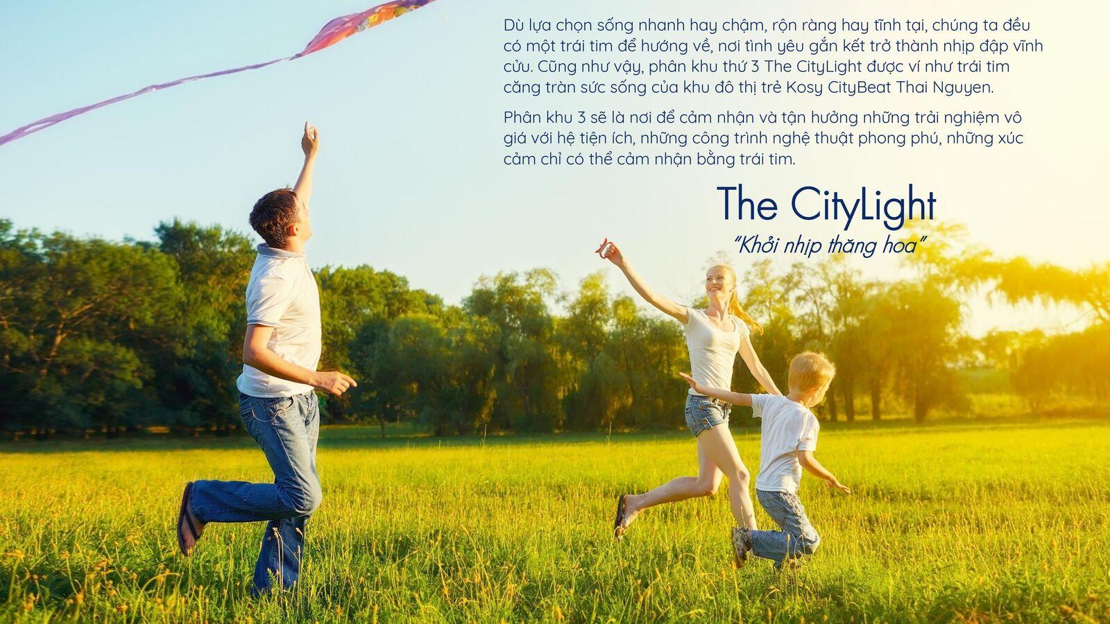 phân khu the citylight